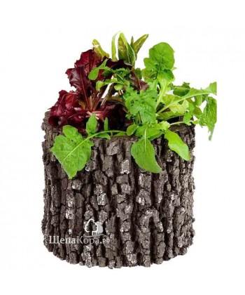 Горшок-цветочница вертикальный, дуб (M)