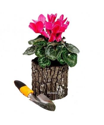 Горшок-цветочница вертикальный, дуб (S)