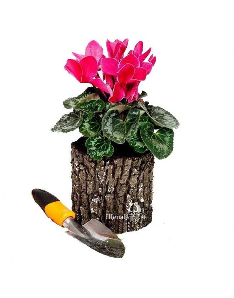 Маленький горшок-цветочница вертикальный, дуб (S)