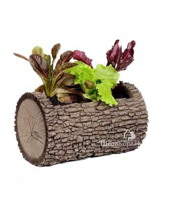 Горшок-цветочница горизонтальный, дуб (M)