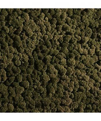 Мох стабилизированный (темно-зеленый)