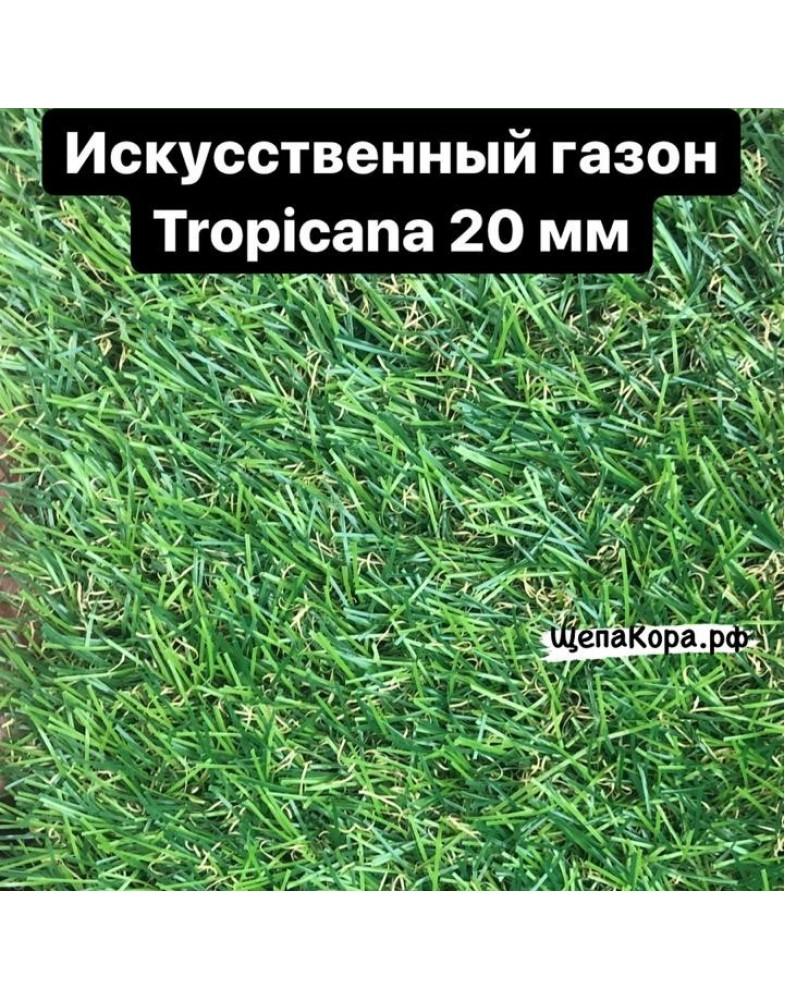 Газон Tropicana 20 мм