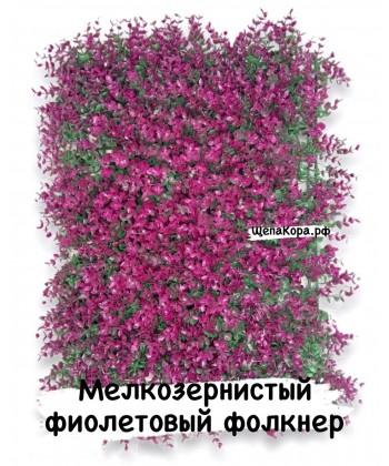Фолкнер фиолетовый, 40х60 см
