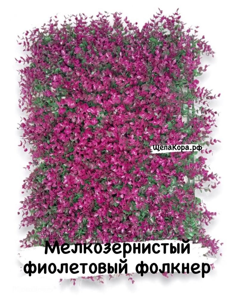 Фолкнер фиолетовый  40х60 см
