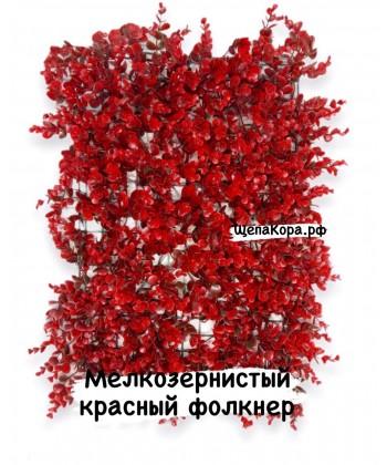 Фолкнер красный, 40х60 см