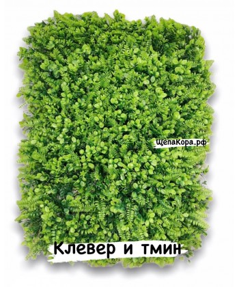Клевер и тмин, 40х60 см