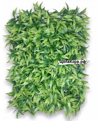 Зелень, 40х60 см