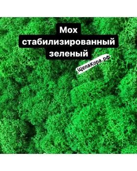 Мох стабилизированный зеленый, 1 кг