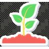 Зимние укрытия для растений