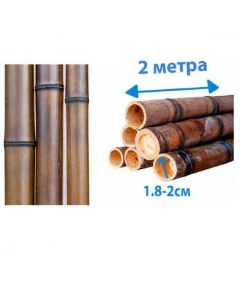 Ствол  бамбука коричневый, диаметр 1.8-2 см