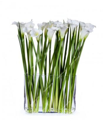 Каллы белые (17 цветов) в прямоугольном дизайн-стекле с водой, 70см