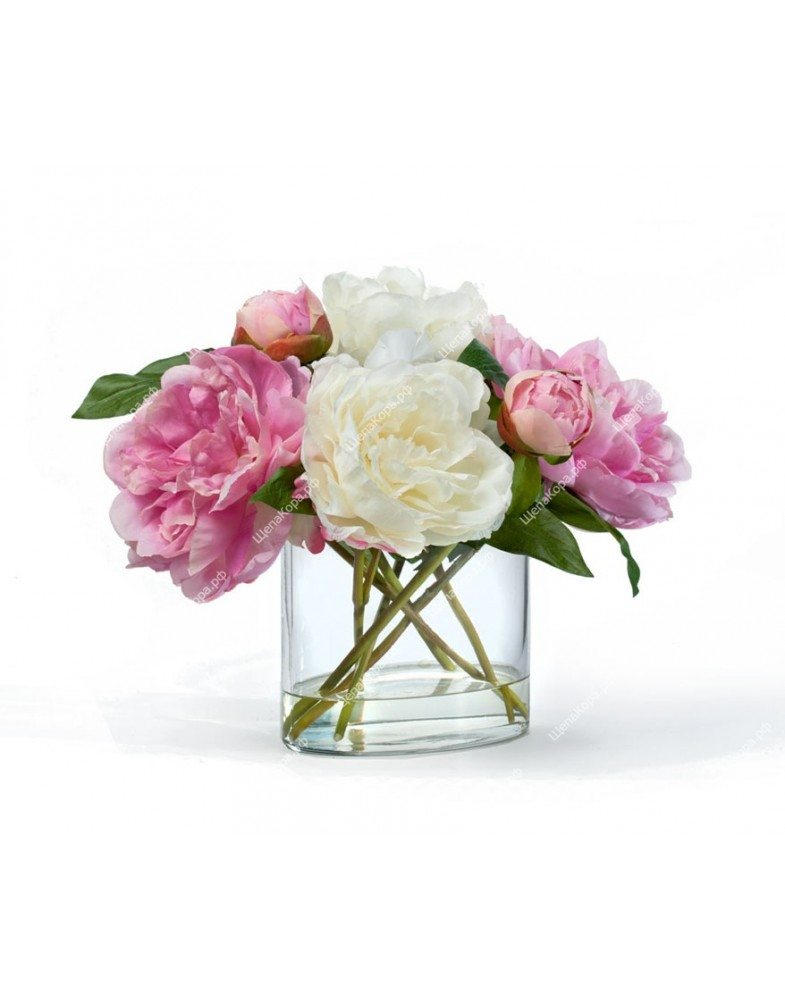 Композиция Бело-розовые Пионы в овальной вазе с водой, 28см