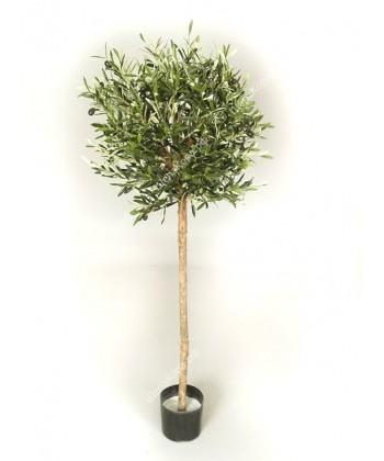 Олива натуральная шар, 140 см