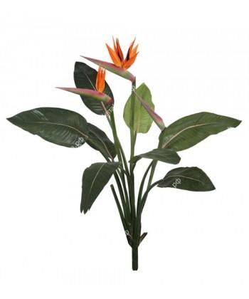 Стрелиция Королевская куст, 105см (2 цветка 1 бутон)