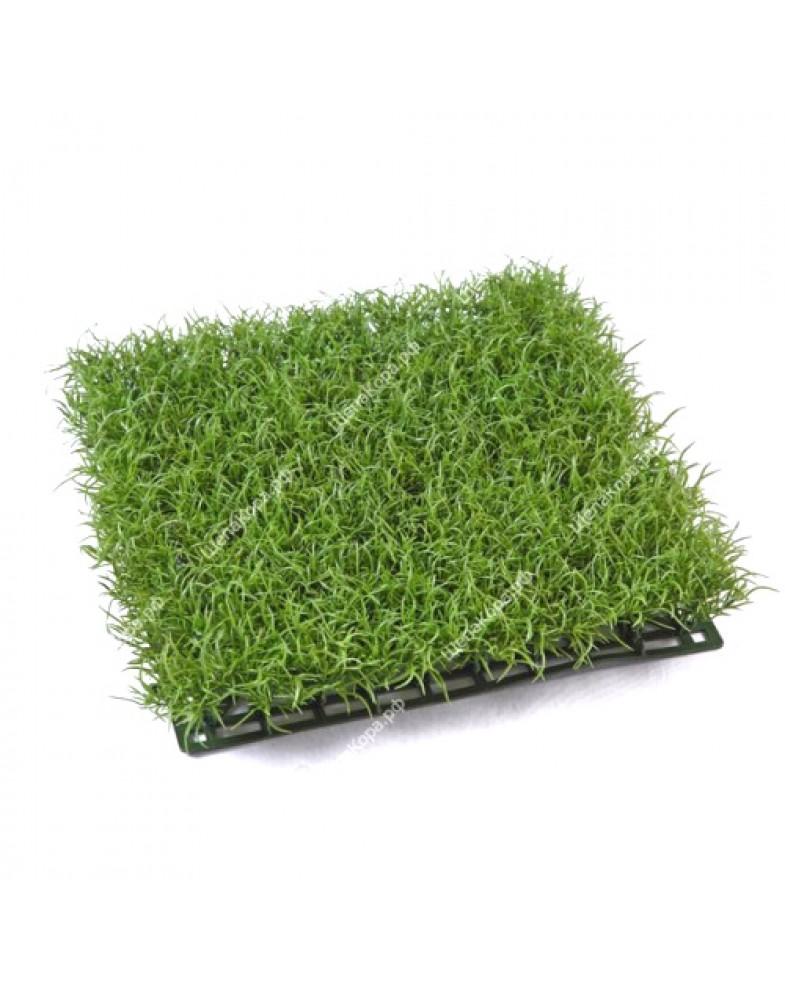 Газон-трава