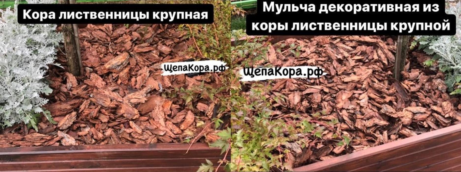 кора лиственницы 10-20 см в декоре садовой клумбы